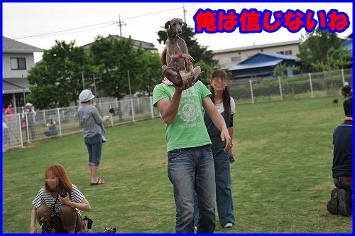 DSC_4450_20110519013350.jpg