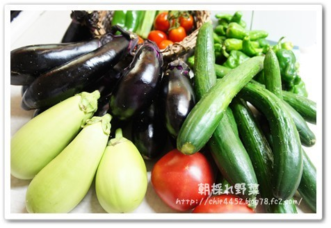 朝採れ 野菜