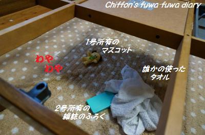 DSC00370_convert_20131213214552.jpg