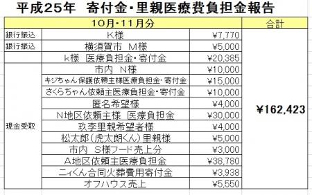 寄付金医療費2510-11