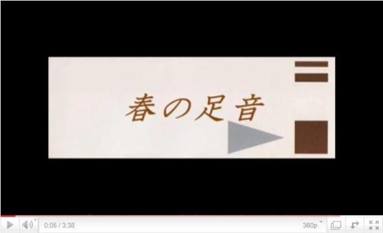haru_20110302212400.jpg