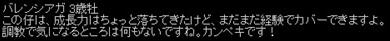 2011y09m13d_030538202.jpg