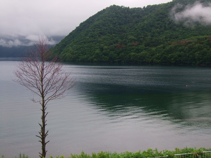 2011北海道 847