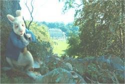 うさぎを追いかけてアリスが森の中