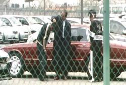 警官の拳銃を盗んだ手下を締め上げている暴力団会長