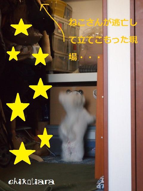 002_20120505220918.jpg