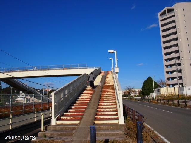 032_20121117212941.jpg