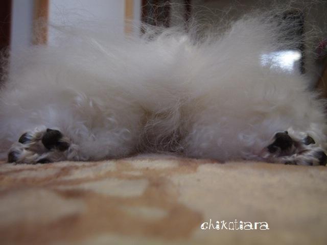 035_20120313220700.jpg