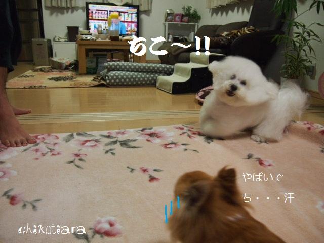052_20120611221232.jpg