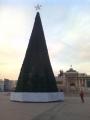 チンギス広場ツリー2014-5
