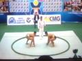 相撲選手権2014-1