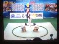 相撲選手権2014-2