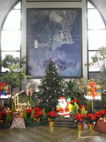 夢の島熱帯植物園 クリスマス仕様