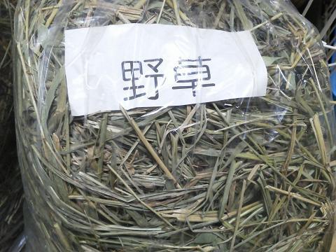 渡辺牧場 野草