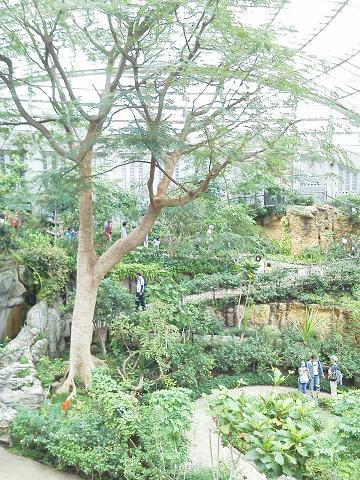 多摩動物公園 ~昆虫園~