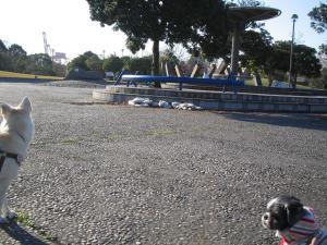 ちびもえ2010.12 187