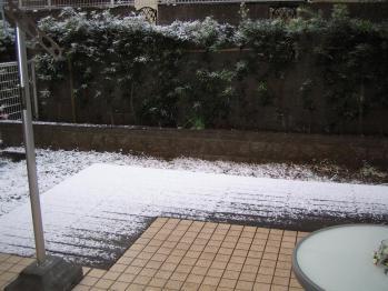 ちびもえ2011.01.16 002