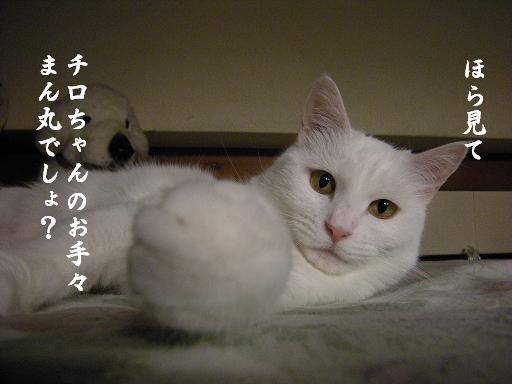 1_20120608214917.jpg