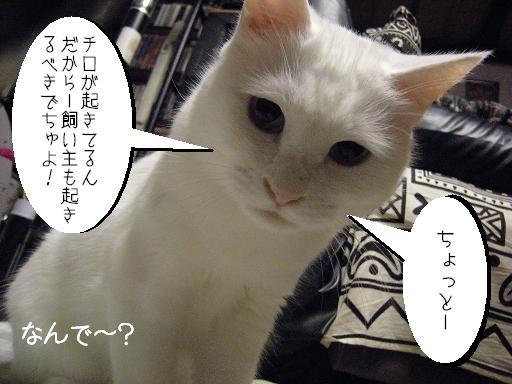★★ おきろ1