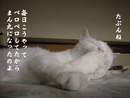 2_20120608214923.jpg