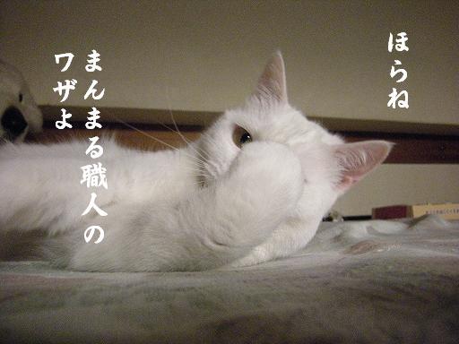 3_20120608214929.jpg