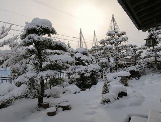 積雪らしい風景