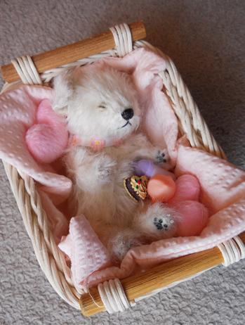 眠り子犬 白