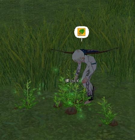 mabinogi_2011_06_03_001-crop.jpg