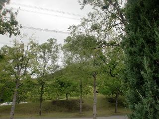 shukusho-CIMG2029.jpg