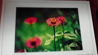 shukusho-P1000315.jpg