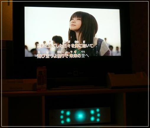 P1310359_A.jpg
