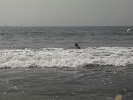 サザンビーチでクロ3