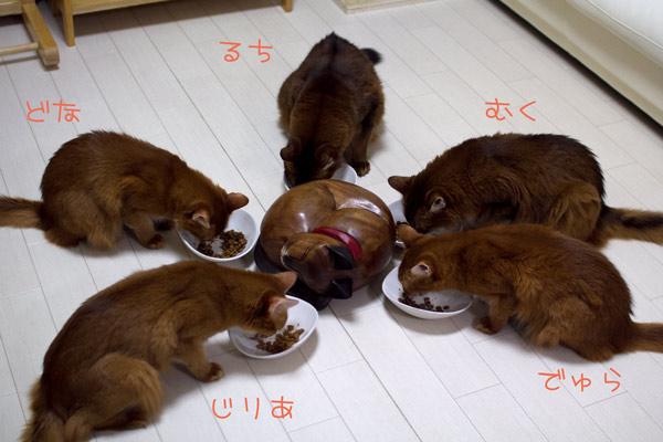 2011_10_05_2.jpg