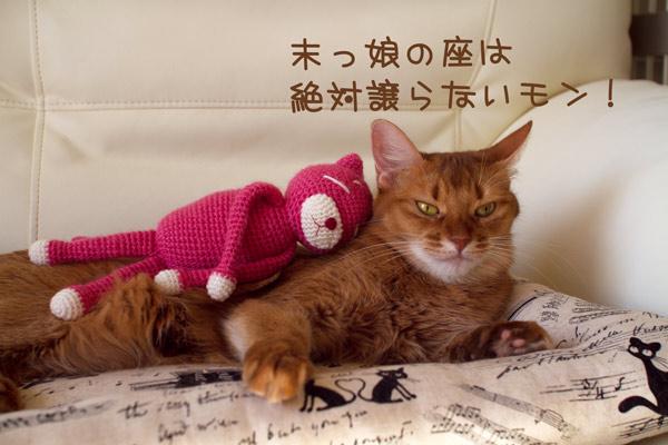 2011_11_15_3.jpg