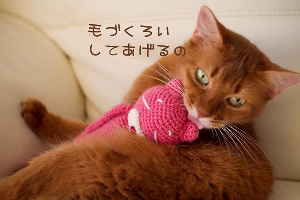 2011_11_16_2.jpg