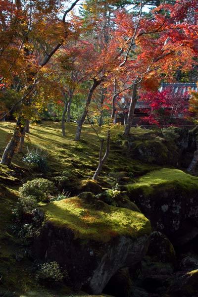2011_11_28_11.jpg