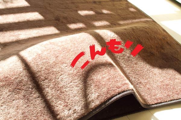 2011_12_21_1.jpg