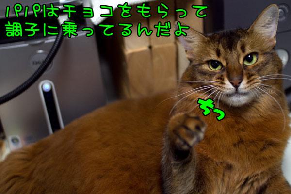 2012_02_16_5.jpg