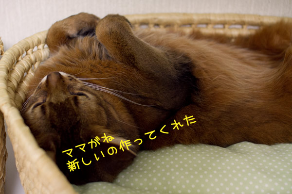 2012_02_25_1.jpg