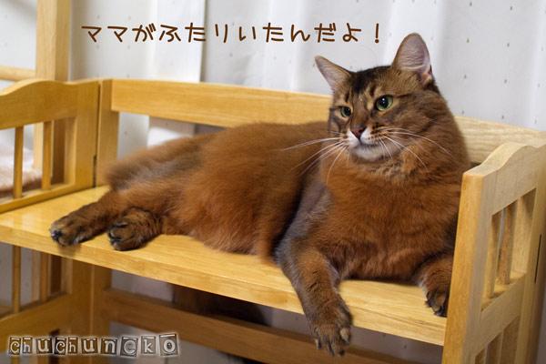 2012_03_21_3.jpg