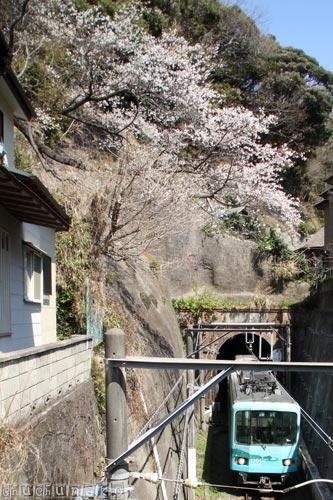 2012_04_10_2.jpg