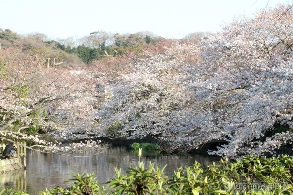 2012_04_12_1.jpg