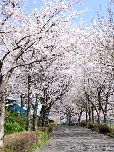 2012_04_13_2.jpg