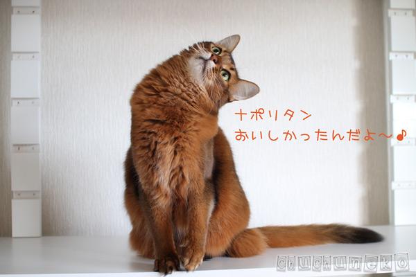 2012_04_27_1.jpg