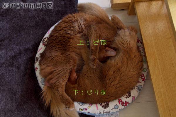 2012_05_10_5.jpg
