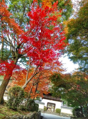 th_写真 2013-11-22 15 20 34 (1)