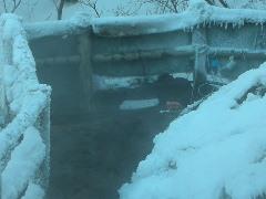 09年12月10日から12月111日冬の富良野温泉探索s069