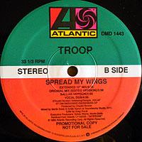 Troop-Spread(PRO)200.jpg