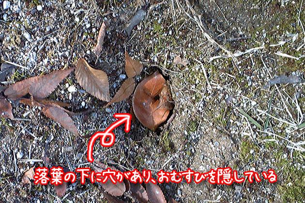 20101217hashibutogarasu07.jpg