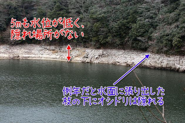 20110109mizumi.jpg
